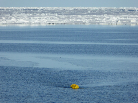 After release the yellow buoy of the accoustic mooring breaks the surface in the 200 meter wide lead in the sea ice.: Photo: Agnieszka Beszczynska-Möller, IOPAS