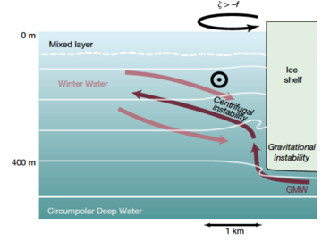 Schematic of the meltwater outflow from beneath the Antarctic ice Shelf (see paper in Nature (Figure 4) for details).