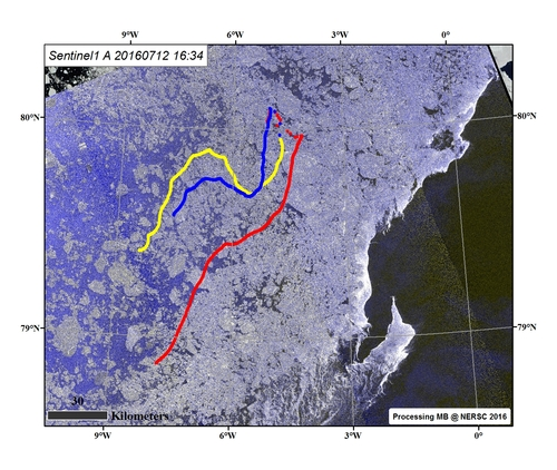 Sentinel-1A SAR image of 12. July, including the three GPS trajectories in sea ice in the Fram Strait.: Image processing: M. Babiker, NERSC.