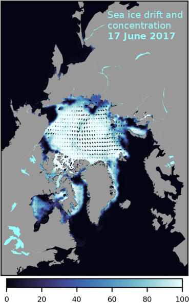 Multi-satellite based sea ice concentration and ice drift for the entire Arctic based on data from the SPICES and ESA CCI Sea Ice projects.