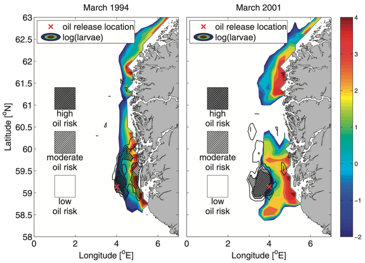 Two different years showing different levels of overlap during the same time of year, Figure 10 in Samuelsen et al. (2019). Left: In March 1994, an oil spill in the hypothetical location would have led to massive overlap of oil and cod eggs/larvae in the same region. Right: In March 2001, a hypothetical spill in the exact same location would have resulted in a much lower risk for cod eggs/larvae to be contaminated with oil. This shows that variations between years can be significant, and according to the recent study, this is mainly caused by variations in winds and currents.