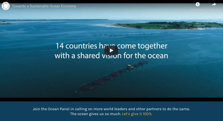 Click on the image to get redirected to Youtube to watch the Ocean Panel video. Copyright: High Level Panel for a Sustainable Ocean Economy